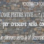 VOLONTARI CON DON BOSCO: IN CAMMINO VERSO LA VI ASSEMBLEA GENERALE