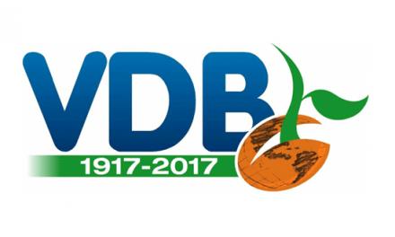 Istituto Secolare Volontarie di Don Bosco (VDB)